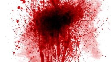 Photo of BLOODHUNTER (ESP) «The first insurrection» PROMO CD 2013 (Autofinanciado)