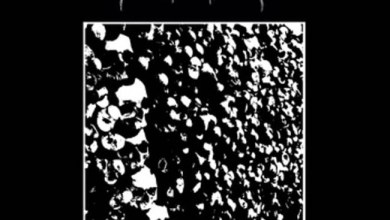 "Photo of [CRÍTICAS] CONTAMINATED (AUS) ""Pestilental decay"" CD 2014 (Crawling Chaos Records)"