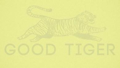 Photo of [CRÍTICAS] GOOD TIGER (USA) «A head full of moonlight» CD 2015 (Autoeditado)