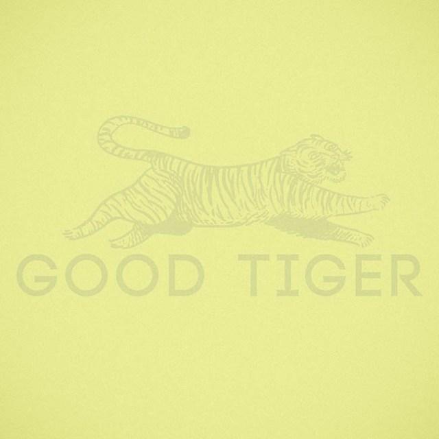 good tiger - a head - web