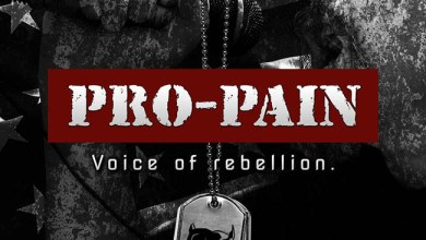 Photo of [CRÍTICAS] PRO-PAIN (USA) «Voice of rebellion» CD 2015 (SPV Steamhammer)
