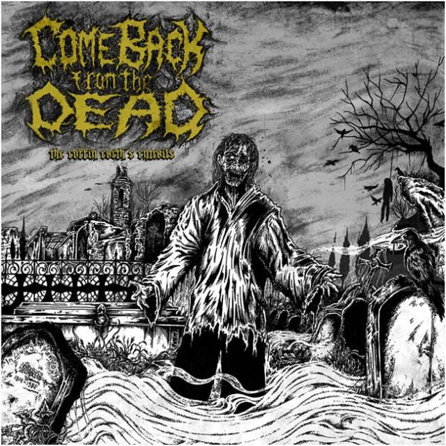 come back - coffin - web