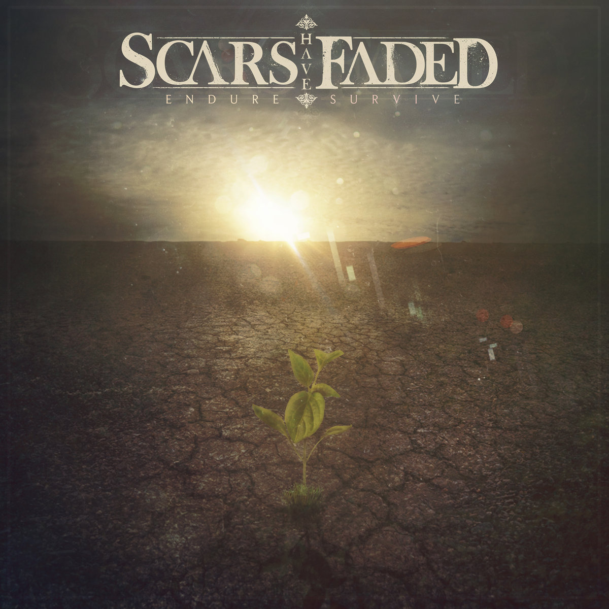 Scars have faded - endure - web