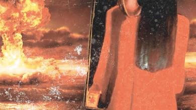 Photo of [CRÍTICAS] BRAIN DAMAGE (ITA) «The downfall» CD 2016 (My Kingdom Music)