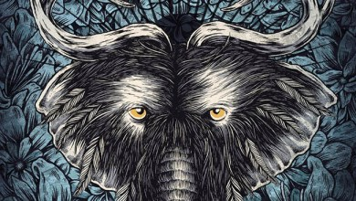 Photo of [CRÍTICAS] TOOTHGRINDER (USA) «Nocturnal masquerade» CD 2016 (Spinefarm Records)