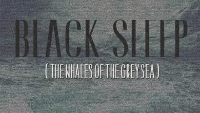 "Photo of [CRÍTICAS] BLACK SLEEP (FIN) ""The whales of the grey sea"" CD 2016 (Sliptrick Records)"