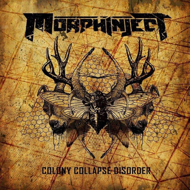 morphinject-colony-web