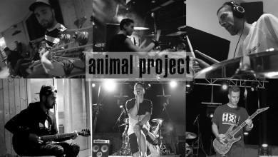 Photo of [ENTREVISTAS] ANIMAL PROJECT (ESP)