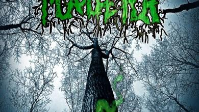 """Photo of [CRITICAS] MADERA (ESP) """"Green poison"""" CD 2016 (Autoeditado)"""