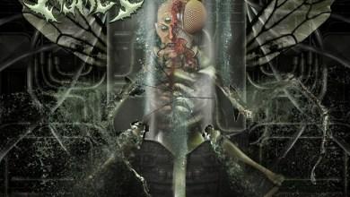 Photo of MORTAL ASHES (USA) «An Abhorrence» CD 2017 (Autoeditado)