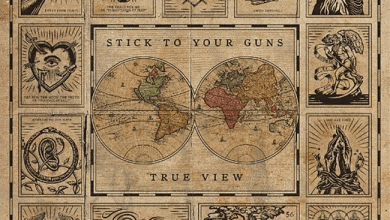 """Photo of STICK TO YOUR GUNS (USA) """"True view"""" CD 2017 (End Hits Records)"""