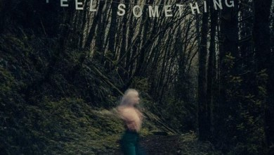 Photo of MOVEMENTS (CAN) «Feel something» CD 2017 (Fearless records)