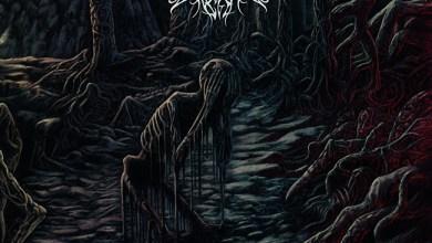 Photo of OSSUARY INSANE (USA) «Decimation of the Flesh» CD 2018 (Blood harvest records)
