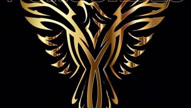 Photo of THE CASCADES (USA) «Phoenix» CD 2018 (Echozone)