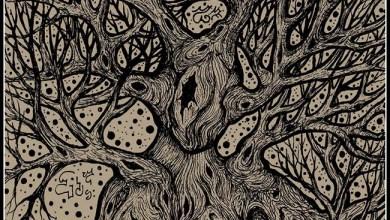 Photo of PLAGUE PIT (IRL) «Labyrinthine» CD EP 2019 (Autoeditado)