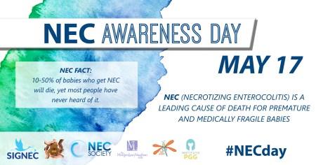 NEC FACT 3