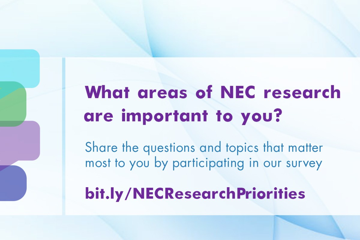 What areas of NEC research are important to you?