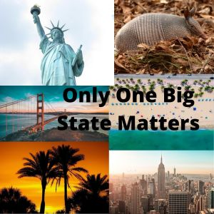 The Electoral College Game – Only One Big State Matters