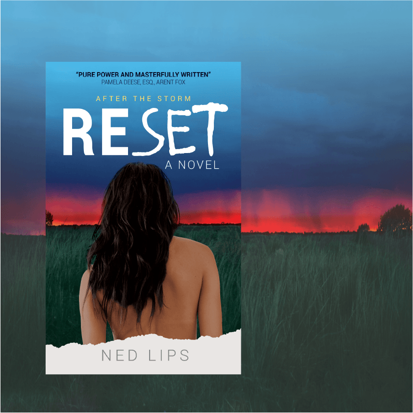Read more about the article RESET Page 6