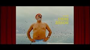 Bill Murray as Steve Zissou in The Life Aquatic
