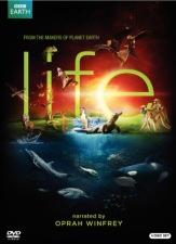 Life DVD Cover Art