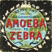 Being 747: Amoeba to Zebra