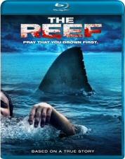 Reef Blu-Ray