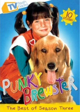 Punky Brewster: Best of Season 3 DVD