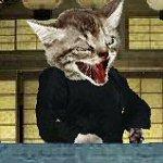 Kitten Fu Grindhouse!