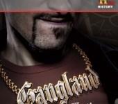 Gangland Final Season Blu-Ray