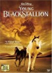 Young Black Stallion (2003) - DVD Review