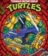 Teenage Mutant Ninja Turtles Season 10 (Final Season) DVD