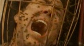 Nicolas Cage and bees