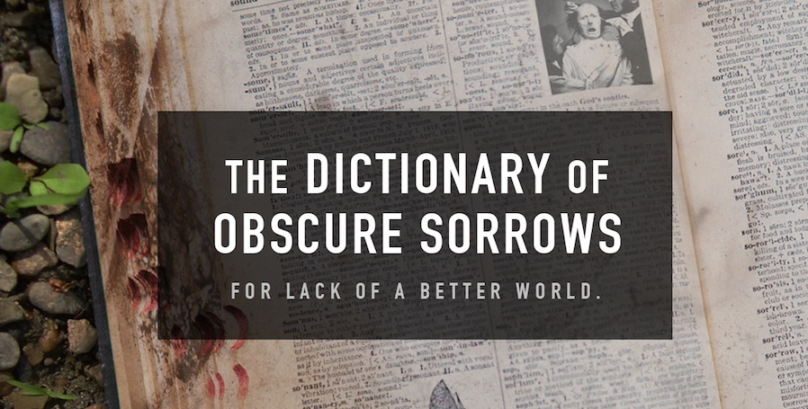 The Dictionary of Obscure Sorrows