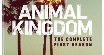 Animal-Kingdom-Season-One-Blu-ray