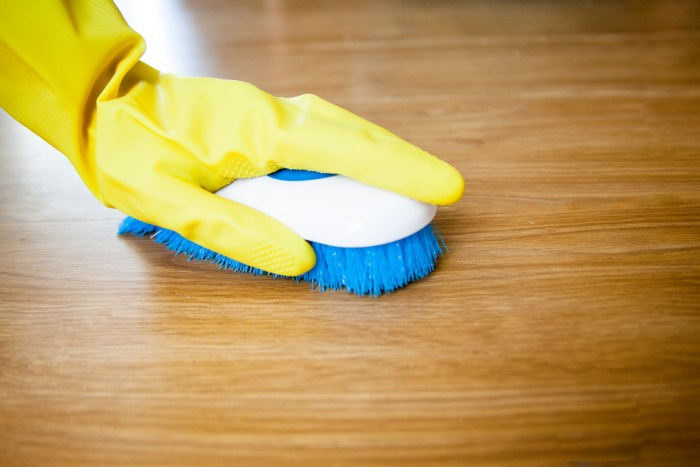 4 Essential Things You Need For A Big Clean Neededinthehome