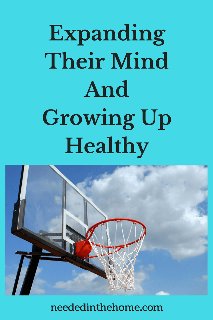 basketball hoop in free air clouds sky Expanding Their Mind And Growing Up Healthy neededinthehome.com
