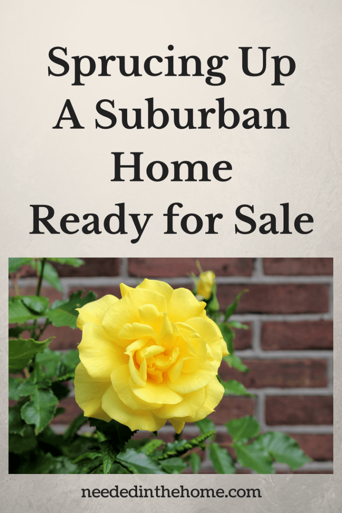 yellow rose and green leaves growing near a brick wall Sprucing Up a Suburban Home Ready for Sale from NeededInTheHome
