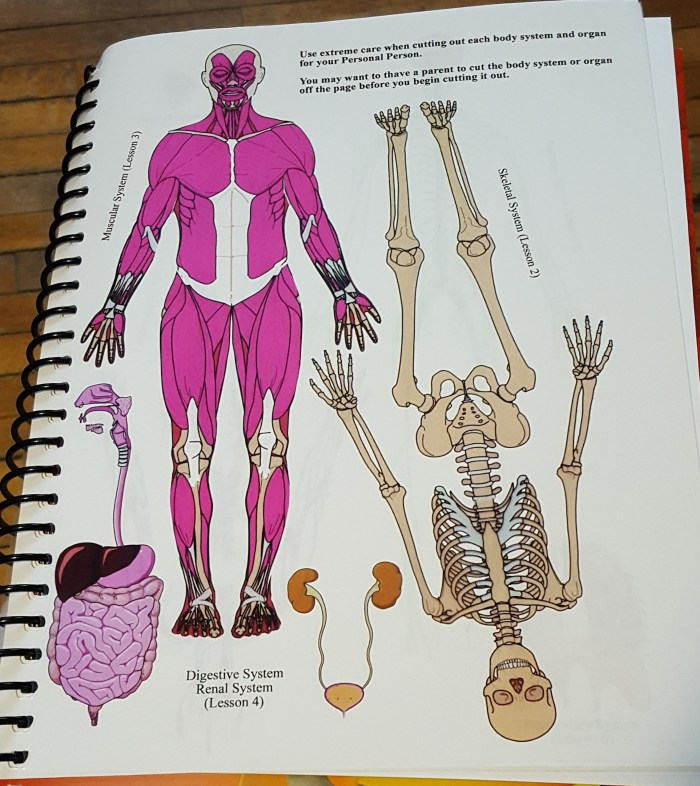 Product Review of Exploring Creation with Human Anatomy & Physiology
