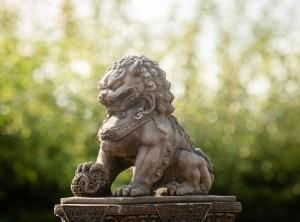 The Lion Guardian