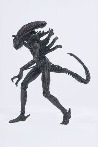 alienpredator_warrior-ref_photo_04_dp
