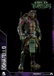 Donatello and Raphael (23)
