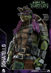 Donatello and Raphael (33)