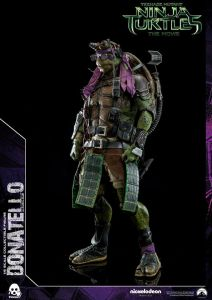Donatello and Raphael (40)