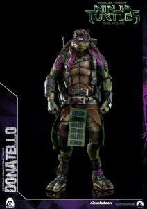 Donatello and Raphael (41)