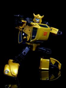 G2 Bumblebee (14)