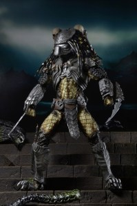 Predator series 14 (6)