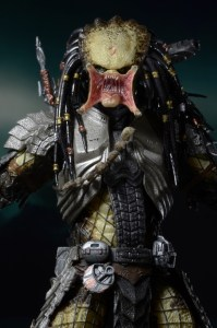 Predator series 14 (9)