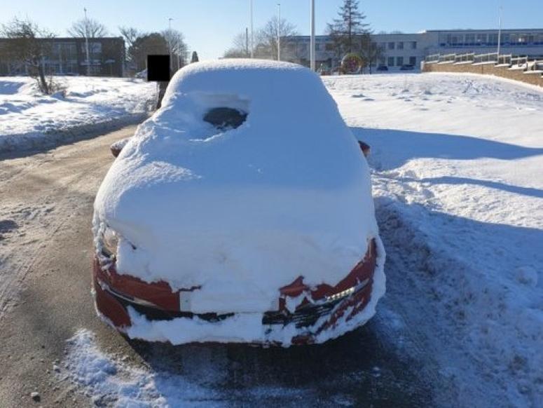 Idiot snow