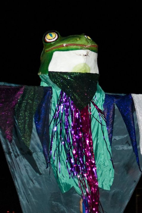 14_puppet_frog